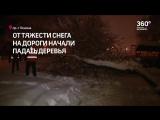 050218_ПОСЛЕДСТВИЯ_СНЕГОПАДА