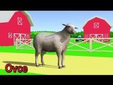 Мультфильм на Чешском языке.   zvuky zvířat pro děti online (VIDEO 3D) 40 Zvířátka na statku, divokých zvířat