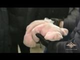 Сотрудники МВД России пресекли канал распространения наркотиков в Новосибирской области