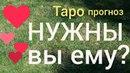 Таро прогноз НУЖНЫ ВЫ ЕМУ ЧТО ОН ХОЧЕТ ОТНОШЕНИЯ Онлайн гадание на картах Таро asmr видео Hygge