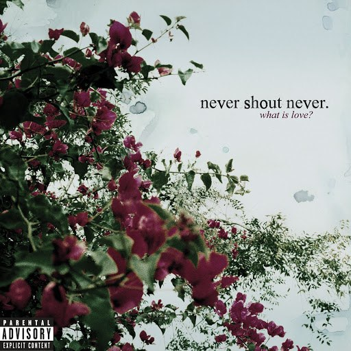 Never Shout Never альбом What Is Love?