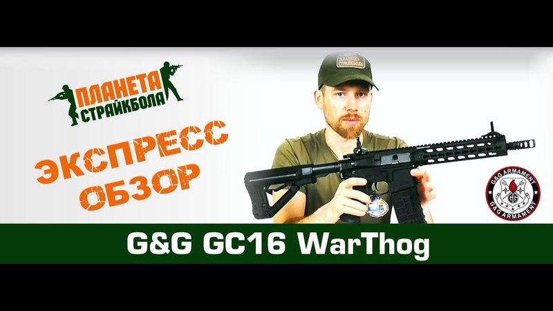 GG GC16 WarThog