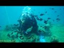I am SSI Open Water Diver))) Крым, Судак, затонувший ракетный катер