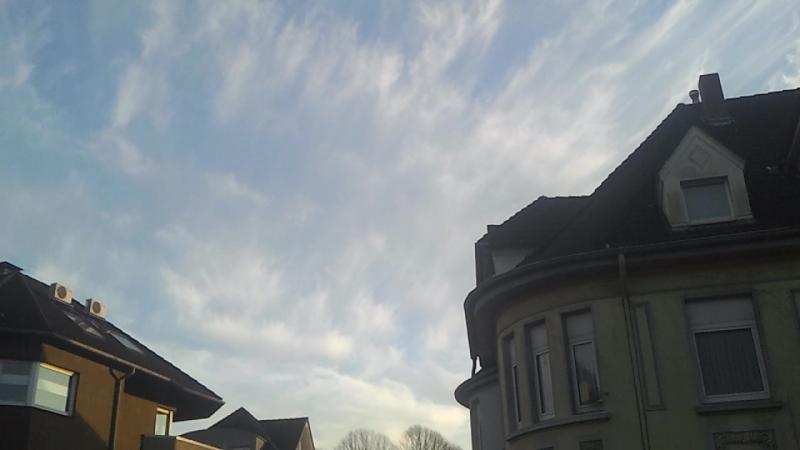 Sylphen und dann blauer Himmel.