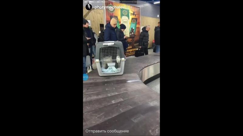Маленькая история о. Фотия 11.03.2018