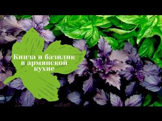 Кинза и базилик: су-шеф рассказывает о традиционных травах армянской кухни