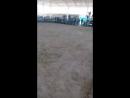 продолжение собачий бой