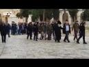 Vidéo : plus d'une centaine de colons ont fait irruption ce matin. sur l'esplanade de la Mosquée Saine D'Al-Aqsa avec une protec