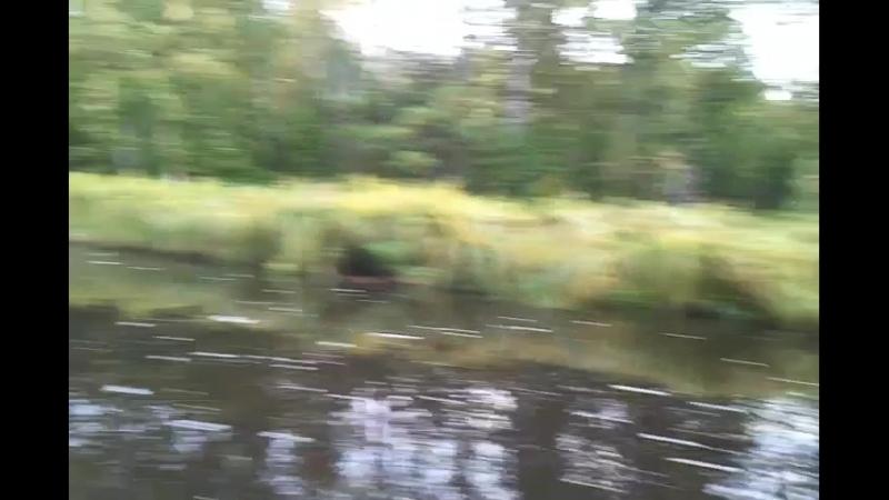 Video-2014-08-24-07-27-01