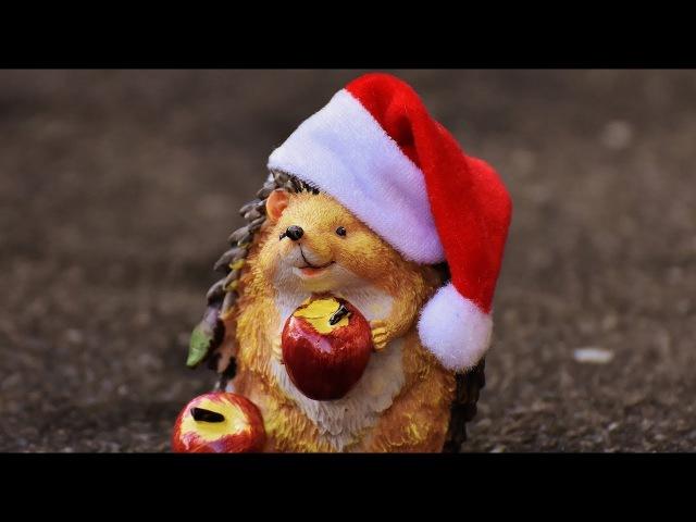 Christmas ᵐᵒᵗᶤᵒᶰ ᵈᵉˢᶤᵍᶰ