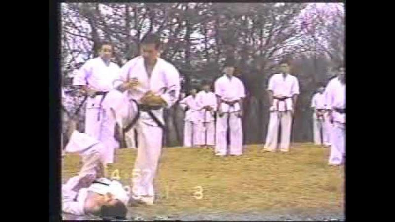 Okinawa Shorin ryu Karate