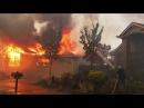 Fire The Plan To Burn Up California 1 Deborah Tavares