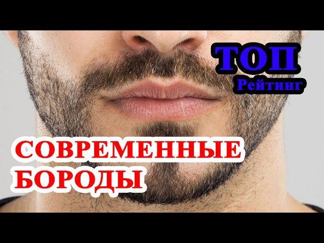 ТОП 8 современных мужских бород. Какую бороду все же носить