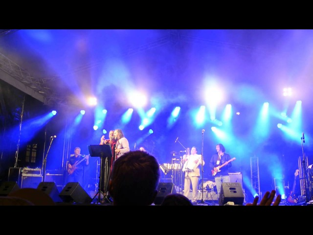 Emir Kusturica The No Smoking Orchestra,part 10