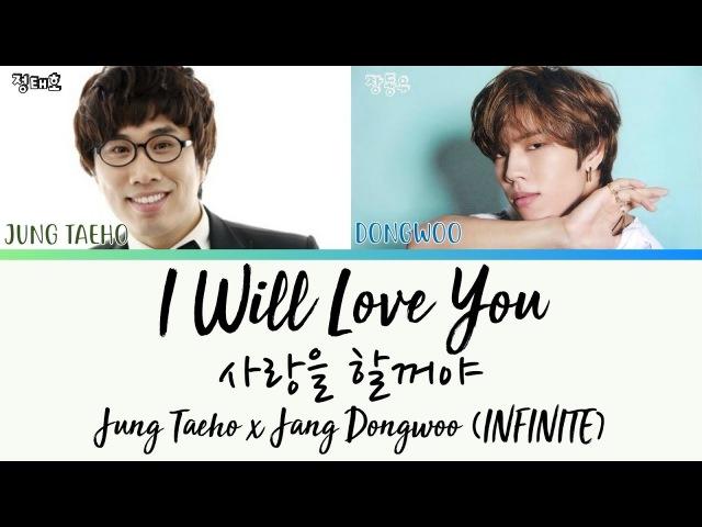 Jung Taeho Dongwoo (INFINITE) - I Will Love You (사랑을 할꺼야) [HAN|ROM|ENG LYRICS/가사]