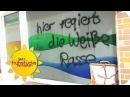 Deutsche vs. Flüchtlinge: ESKALATION IN COTTBUS | SAT.1 Frühstücksfernsehen | TV