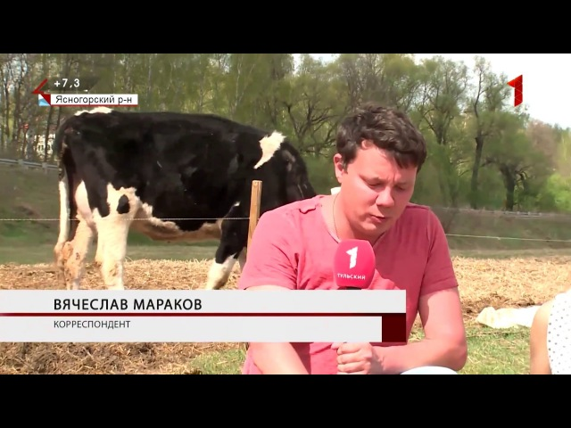 1й Тульский Май 2017. Ферма Чёзасыр