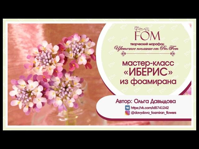 Давыдова Ольга_МК Иберис из фоамирана