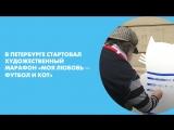 В Петербурге стартовал художественный марафон «Моя любовь — футбол и кот»