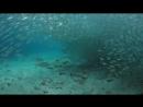Океан. Мини релакс