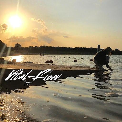 ONYX альбом Vital Flow