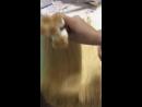 Вырезанная блондинка