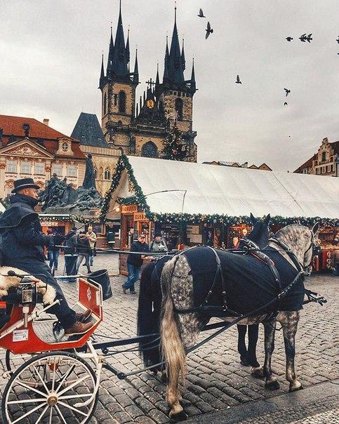 😱Из регионов в Чехию: супер-цены на авиабилеты в Пардубице (всего час езды от Праги