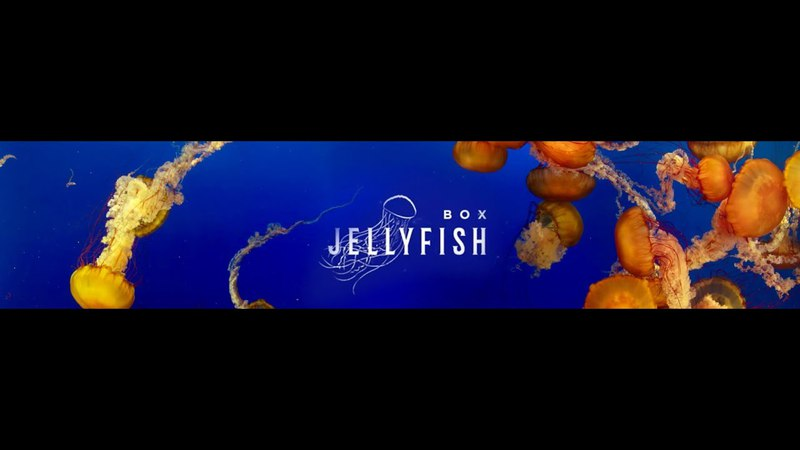 Da Flyy Hooligan - Box Jellyfish