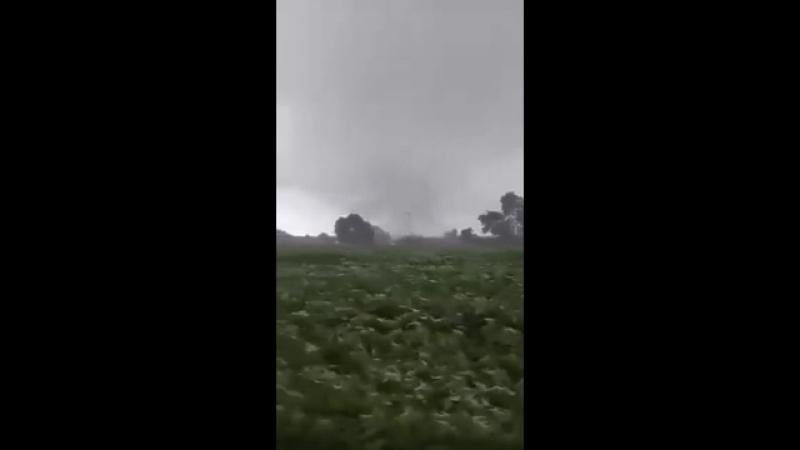 1354 Бразилия. Дождь. Ураган. Смерч. Штат Парана, муниципалитет Толеду, район Вила-Нова. 6 января 2018.