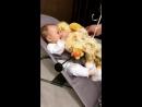 Малышка @elenagord в шезлонге Babybjorn