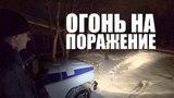 В городе застрелили рысь. Северодвинск