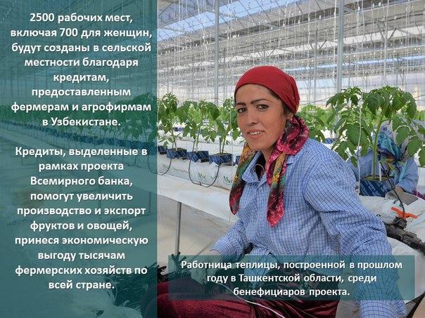 В #Узбекистан'е #Всемирныйбанк вносит вклад в создание рабочих мест дл