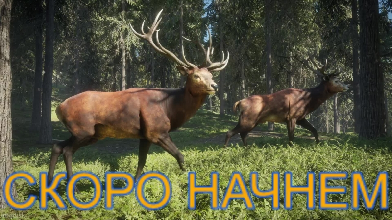TheHunter: Call of the Wild ► Симулятор охотника на Xbox ONE ► Часть - 06
