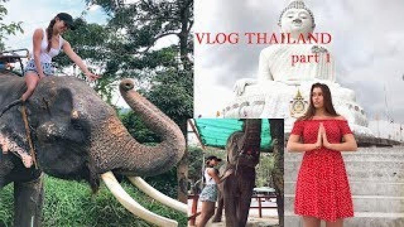 ТаЙланд: на меня наступил слон, Биг Будда и золотые купола с попугаем)