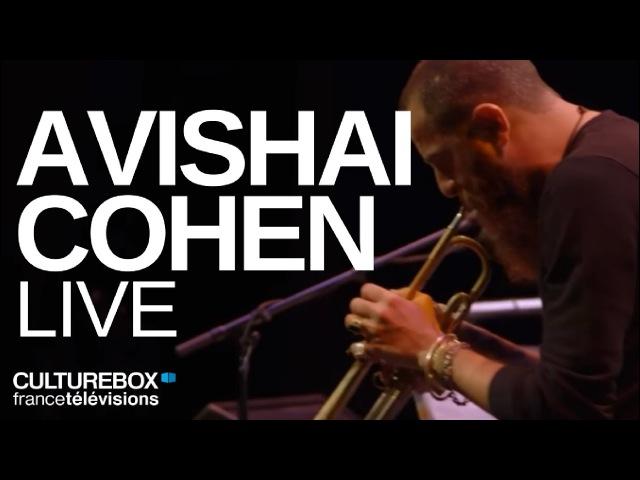 Avishai Cohen quartet (full concert) - Live @ DJazz Nevers Festival