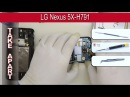 How to disassemble 📱 LG Nexus 5X H791 Google Nexus 5X Take apart