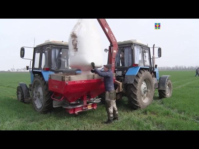 В Темрюкском районе в разгаре сельхозработы