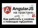 AngularJS на практике Как работать с cookies с помощью ngCookies