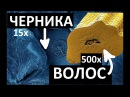 МИР ПОД МИКРОСКОПОМ 1