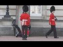 Падение часового у Букингемского дворца в Лондоне · coub, коуб