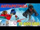 Антарктида. Зачем тратить 75 000 долларов, чтобы не увидеть даже пингвина? MamontCup2018