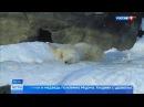Вести-Москва • Весна идет: синоптики обещают потепление, а в зоопарке достают тушканчиков из холодильника