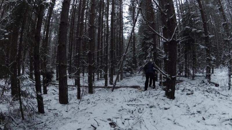 Ленин с бревном на первомае, или как трое зимой в лес ходили