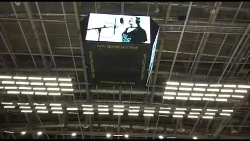 Рузанна Алавердян поет гимн волейбольного клуба Зенит на играх плей офф