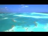 DJ Frankie Wilde &amp Reflekt feat. Delline Bass - Need To Feel Loved (Adam K &amp Soha Vocal Mix)