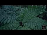 Johny Luv - Drippin (Moe Turk & Monoteq Remix) ALIMUSIC VIDEO