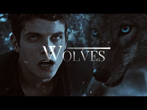 MultiCrossover | Wolves (for Ara and Nuur)
