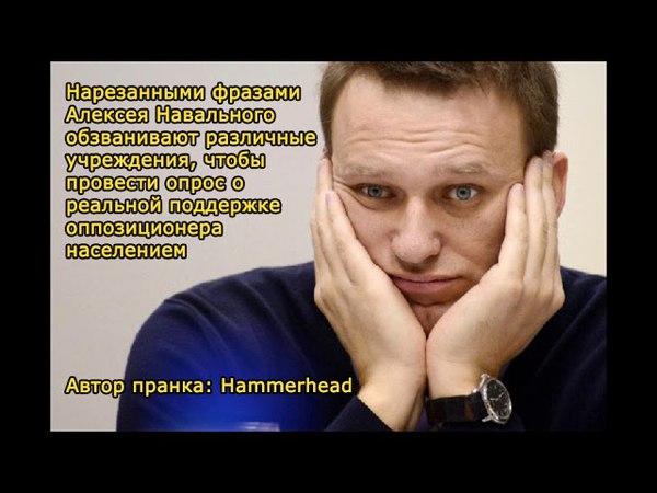 «Навальный» звонит: Сучка-собчучка (пранк)