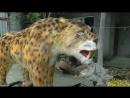 Animatronic Smilodon - Животные Ледникового периода