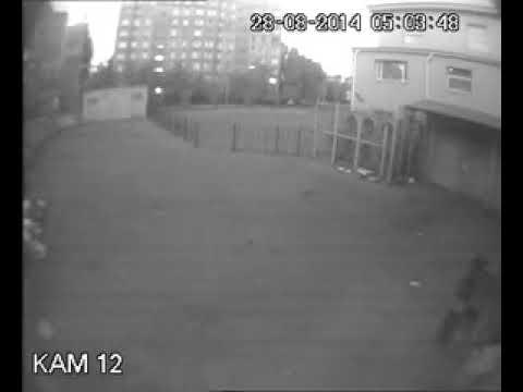 Алчевск, 28.08.2014.